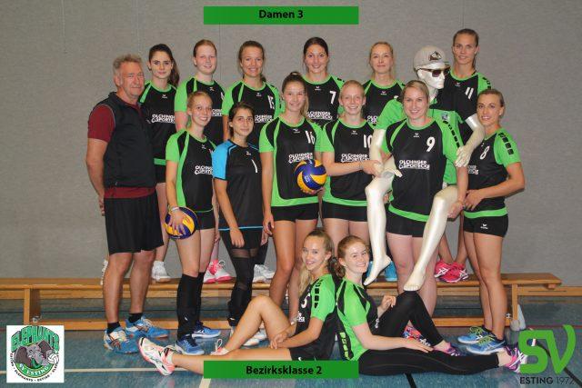 Damen 3 Volleyball