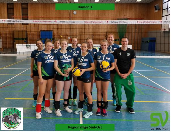 Damen 1 Volleyball
