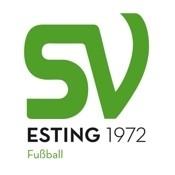 SVE-Logo-Fussball